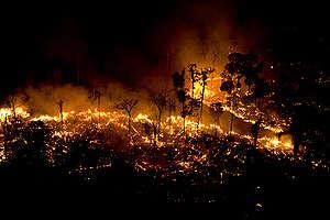 Incendios en el Amazonas