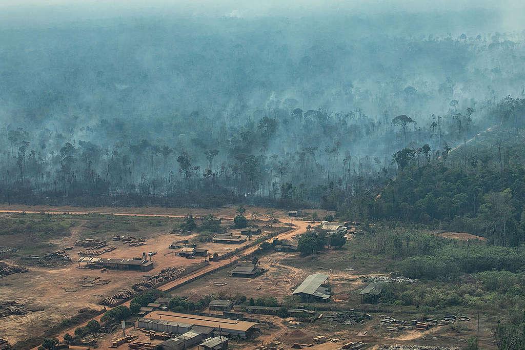 Incendios-en-el-amazonas-causas
