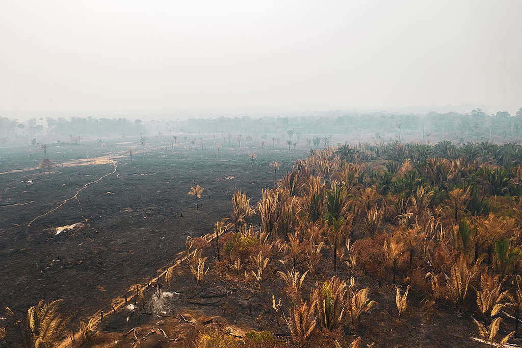 incendios-en-el-amazonas-imagenes