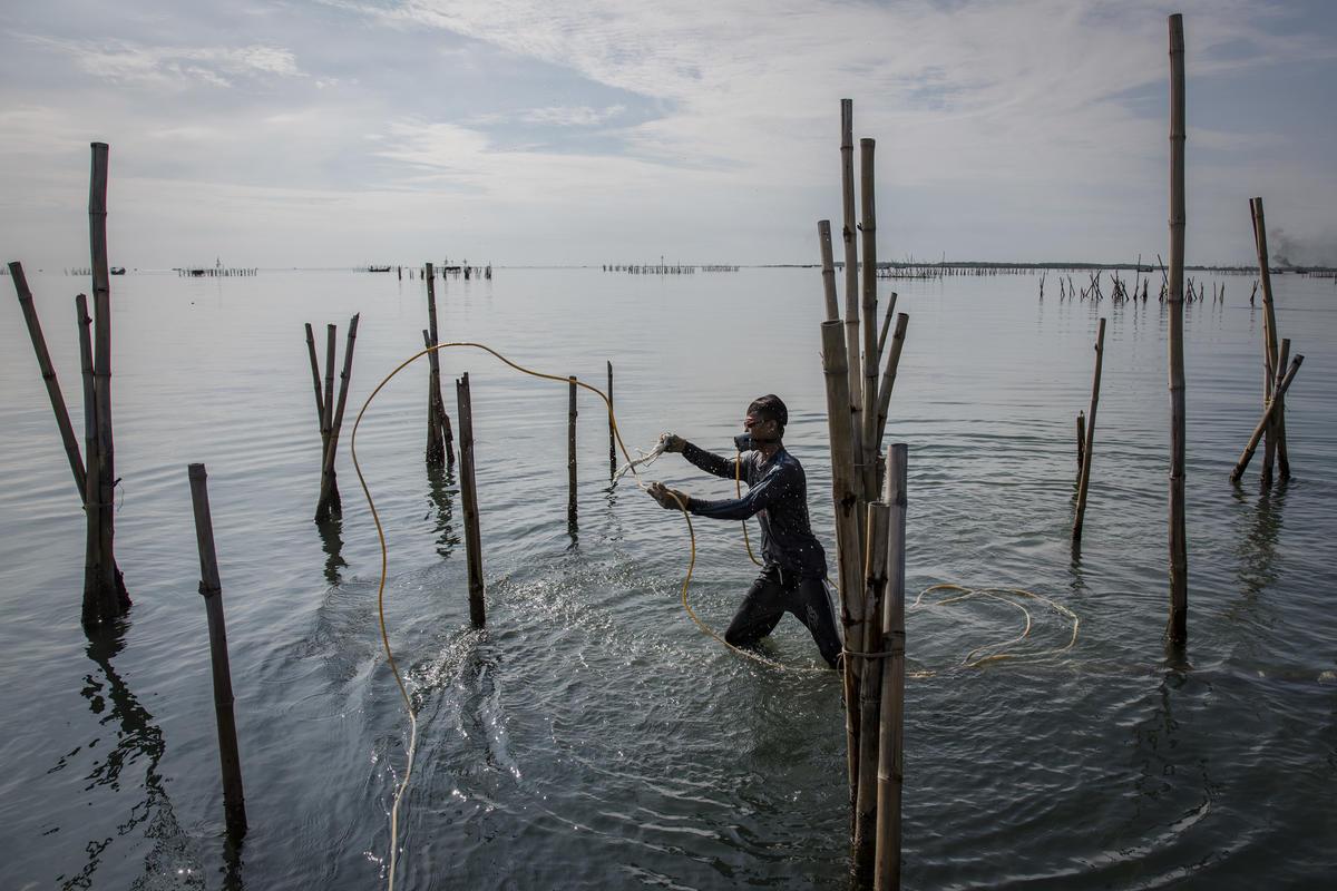 Fishermen in Cirebon. © Ulet Ifansasti / Greenpeace
