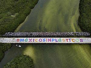 . © Greenpeace / Mario Dib
