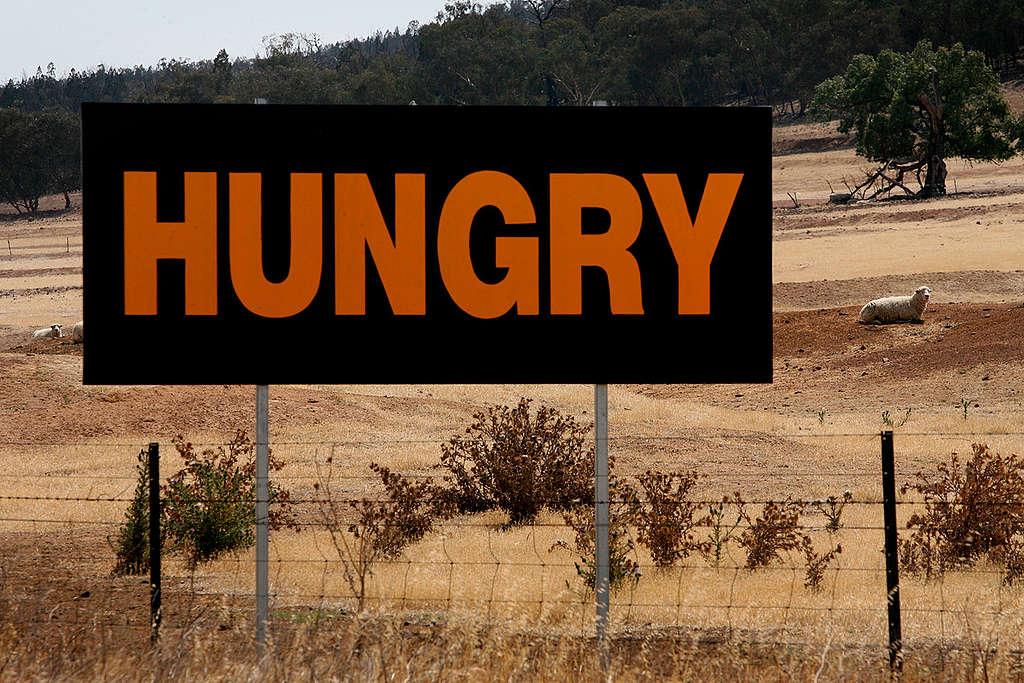 """Señal en medio de la carretera con la palabra """"hambre"""""""