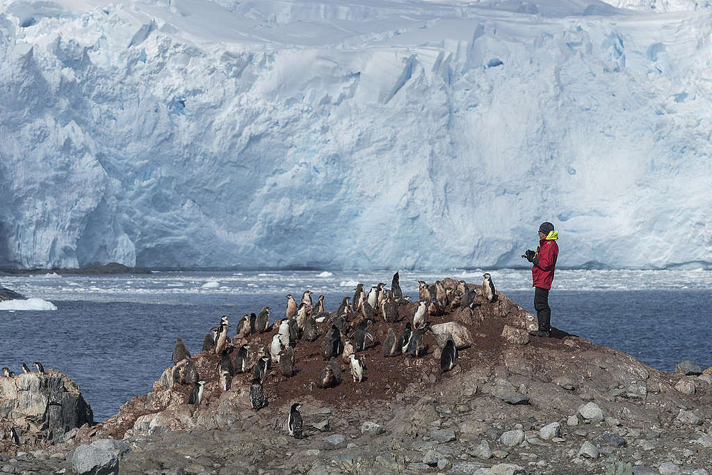 Steven Forrest On  Anvers Island. © Christian Åslund / Greenpeace