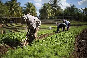 Apoya la economía local y el campo mexicano