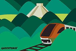 Afectaciones al medio ambiente del tren maya