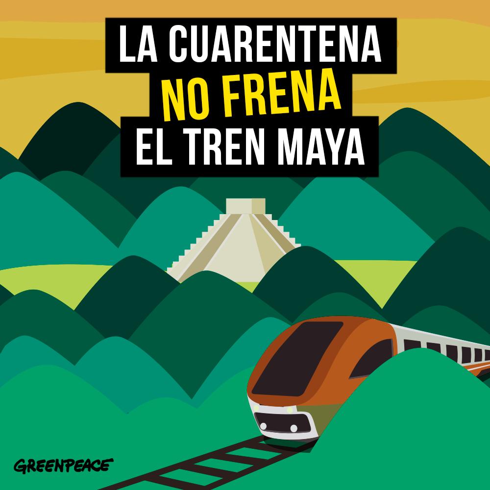 Tren Maya afecta el medio ambiente