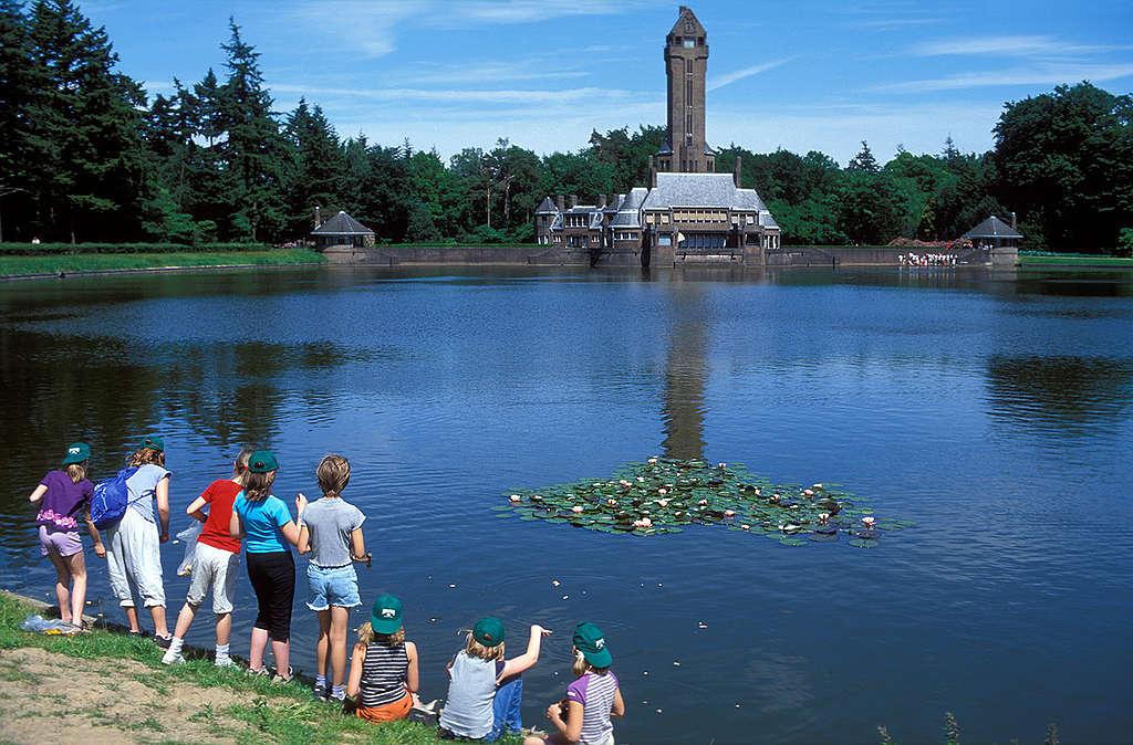 Parques y áreas verdes en las ciudades