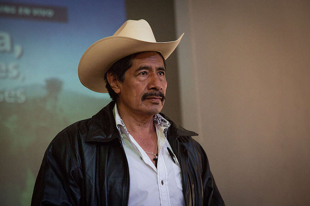 Ildefonso Zamora, activista por los bosques