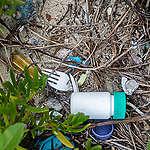 Impacto de la contaminación por plástico en las áreas naturales protegidas en México