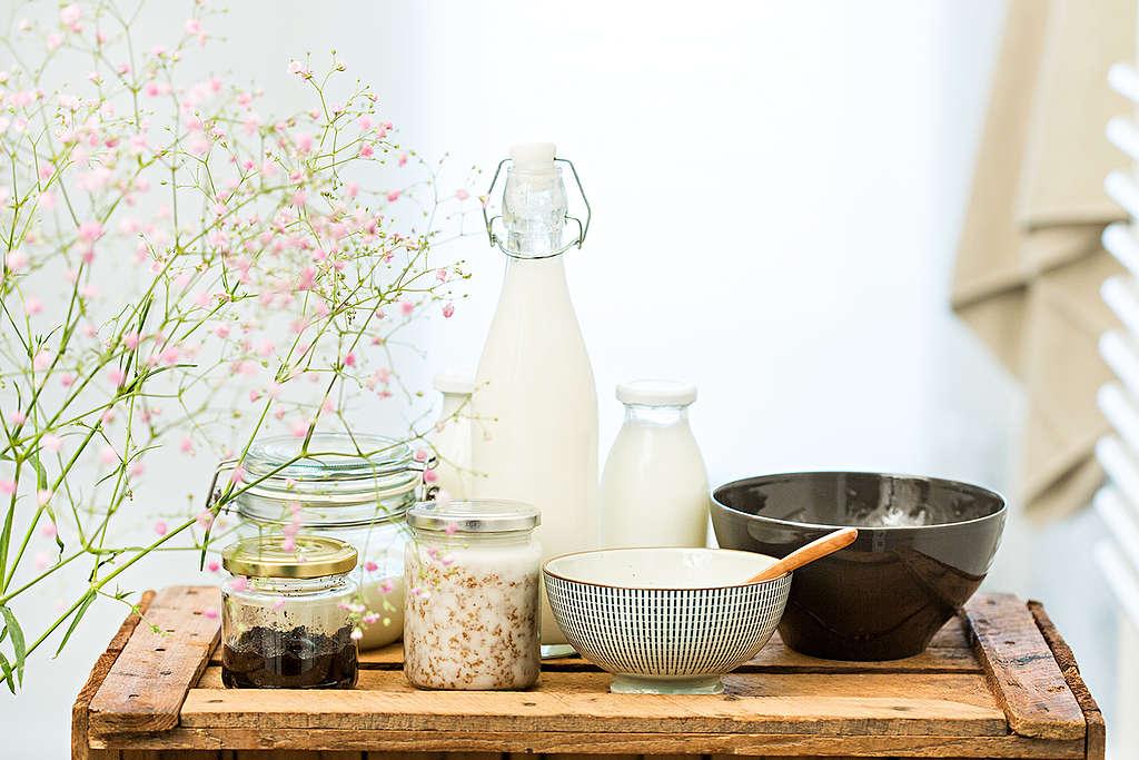 Muchas veces con materiales que tenemos en casa es posible preparar nuestros propios productos de belleza. ¡Hazlo tú mismo, ahorra y cuida al planeta!