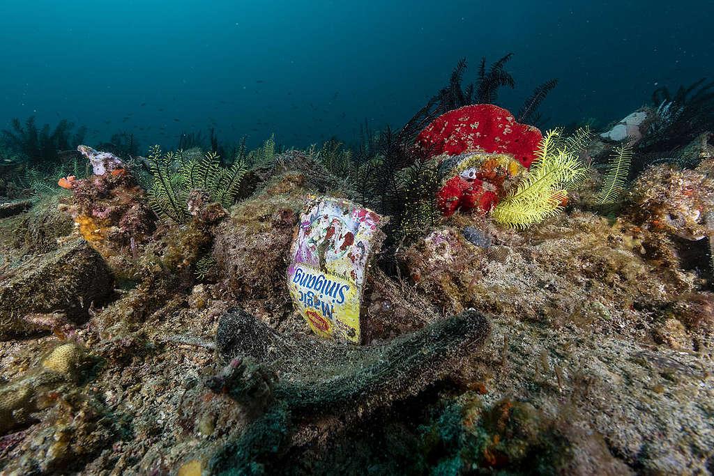 Un consumo responsable exige un cambio en las prácticas de consumo para, entre otros propósitos, evitar una mayor devastación de los ecosistemas. © Noel Guevara / Greenpeace.