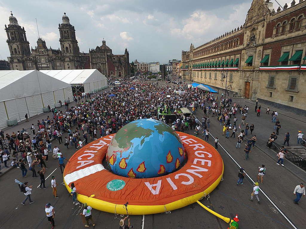 Una sociedad más informada respecto a los impactos ambientales de su consumo es más activa por un futuro ecológico. © Víctor Ceballos / Greenpeace.