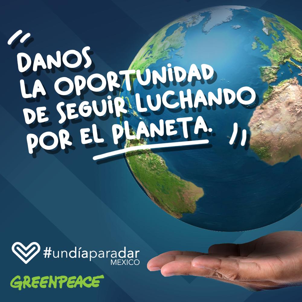 """Únete a la iniciativa """"Un día para dar"""" y dona a Greenpeace"""
