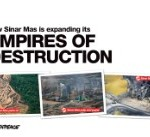 How Sinar Mas is expanding its empires of destruction