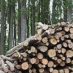 Reactie op uitspraak Geschillencommissie over biomassa