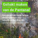 Nederlandse vleesimporteurs zijn betrokken bij natuurbranden Brazilië.