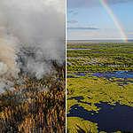 Russische vrijwilligers blijven strijden tegen bosbranden