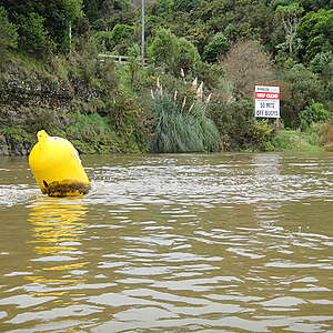 Aucklanders depend on the Waikato River for drinking water – let's clean it up