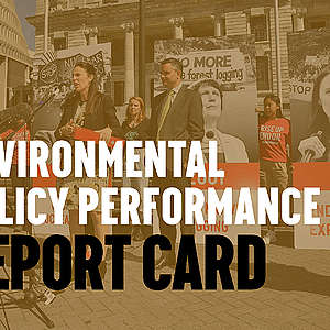Environmental Policy Performance of the Ardern Government Ahead of Election 2020
