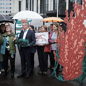 50,000 strong petition calls for an end to bottom trawling on seamounts
