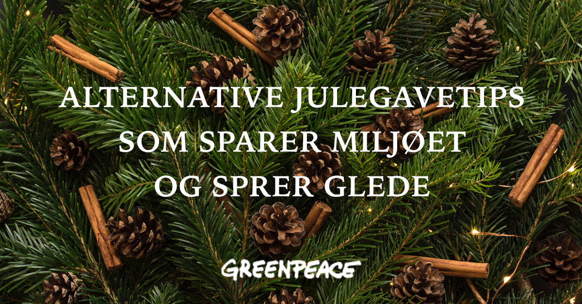 Alternative julegaver som sparer miljøet og sprer glede