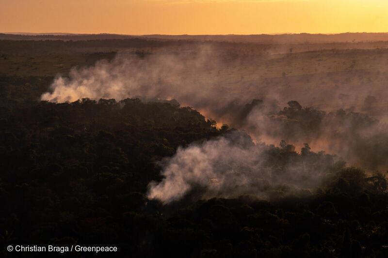 Branner i Amazonas, i Alta Floresta i delstaten Mato Grosso, tatt i juli 2020.