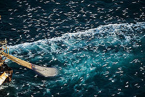 Fishing Activities in the English Channel. © Christian Åslund / Greenpeace