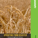 Sprouting from Disaster