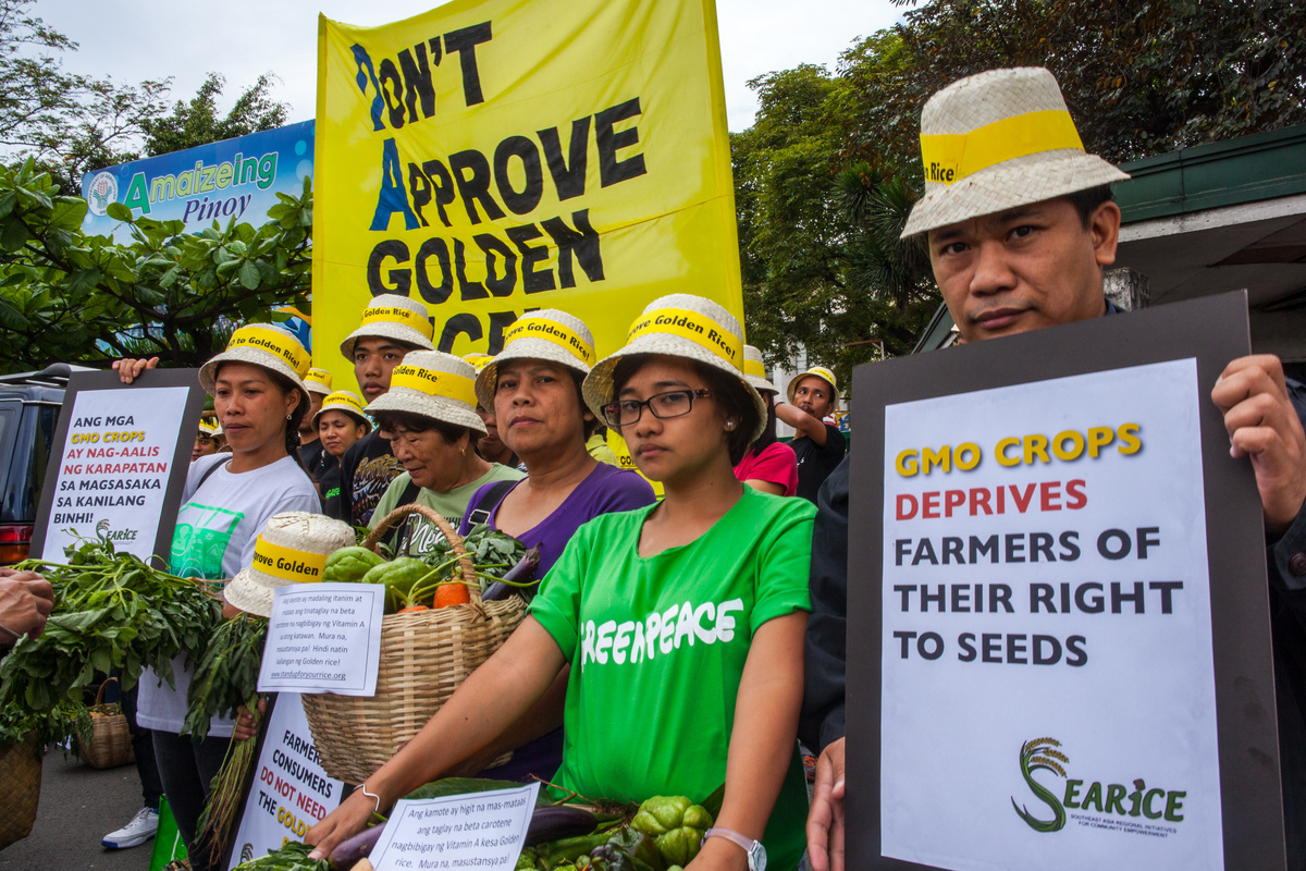 Action at the Department of Agriculture in Quezon City. © Luis Liwanag / Greenpeace