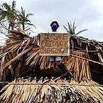 Greenpeace lauds Lower House for climate emergency declaration push