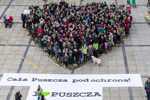 #KochamPuszcze - walentynka dla Puszczy Białowieskiej