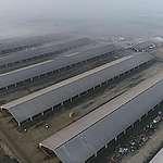 Dairy Factory Farm in Caparroso, Spain. © Tania Garnica / Greenpeace