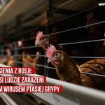 Pierwsi ludzie zakażeni nowym wirusem ptasiej grypy. Greenpeace: odejście od ferm przemysłowych coraz pilniejsze