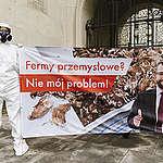 """""""Fermy przemysłowe? Nie mój problem!"""" – Greenpeace wzywa ministra rolnictwa do działania"""
