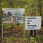 Społeczna mobilizacja w obronie przyrody wstrzymała fatalny projekt nowelizacji ustawy o lasach