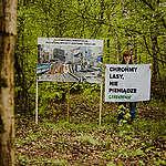 Wytną lasy pod polskie elektryki? Lex Izera z powrotem Sejmie