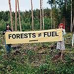 Raport: Przerabiamy lasy na pelet