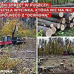 """Wycinka dębów, niszczenie młodych drzew ciężkimi maszynami – ruszyły """"zabiegi ochronne"""" w Puszczy. Organizacje pozarządowe: to nie ma nic wspólnego z ochroną"""