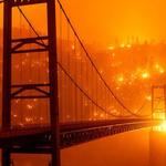Planeta horí – apokalyptická fotoreportáž z obdobia požiarov