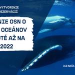 Rokovanie o ochrane oceánov sa síce odkladá, ale kampaň Greenpeace pokračuje
