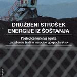 Družbeni strošek energije iz Šoštanja