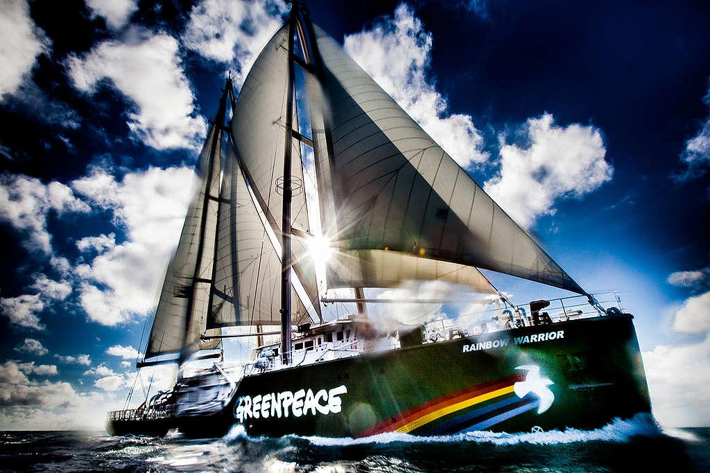 Rainbow Warrior Near the Queensland Coast. © Tom  Jefferson / Greenpeace