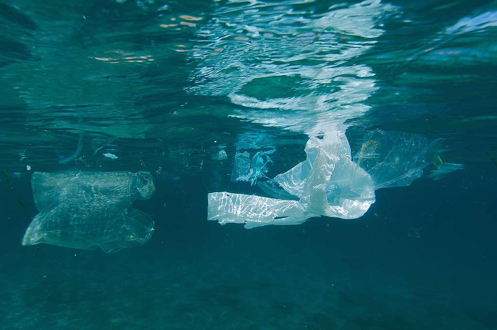Plavajoča plastika v Sredozemskem morju. © Greenpeace / Gavin Parsons