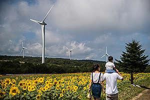 Wind Farm in Fukushima. © Guillaume Bression / Greenpeace