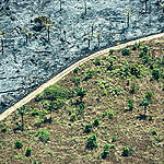 Deforestation in the Amazon Caused by Forest Fires. © Rogério Assis / Greenpeace