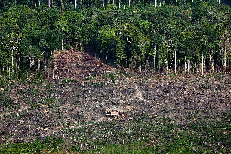 Deforestation in Sumatra. © Daniel Beltrá / Greenpeace