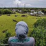 Major palm oil company promises to protect forests