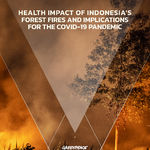 Burning Up: Health Impact of Indonesia's Forest Fires and Implications for the Covid-19 Pandemic