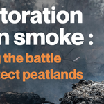 Restoration Up in Smoke: Losing the Battle to Protect Peatlands