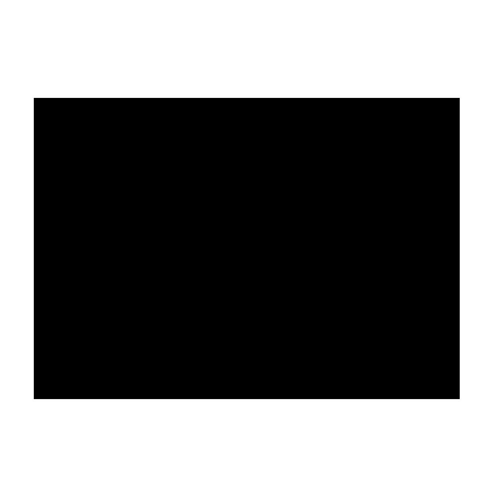 Online Journalism Icon
